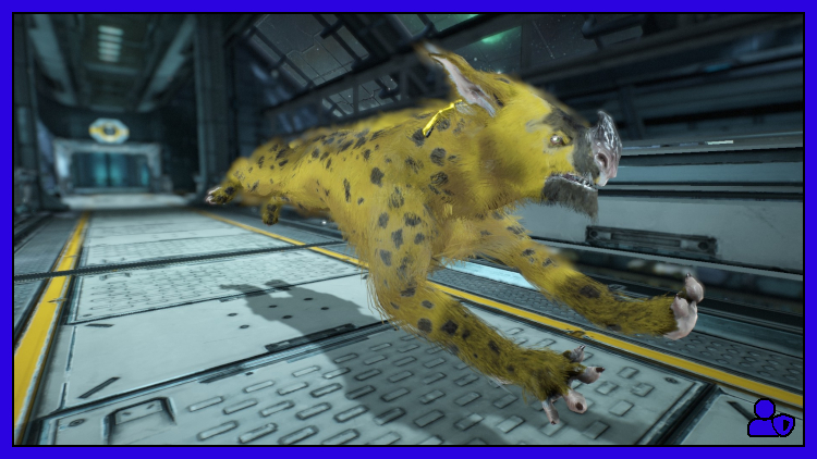 Warframe Kubrow Choices: Which Kubrow for which Content?.jpg